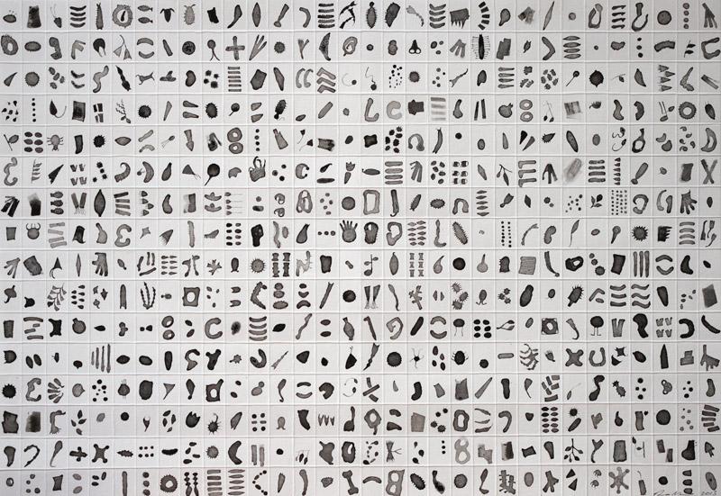 Micrarium no.3, ink on paper