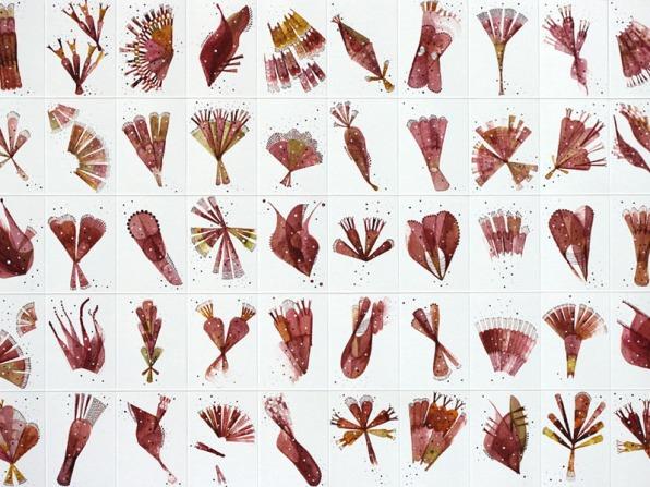 Florilegium no.2 800x600