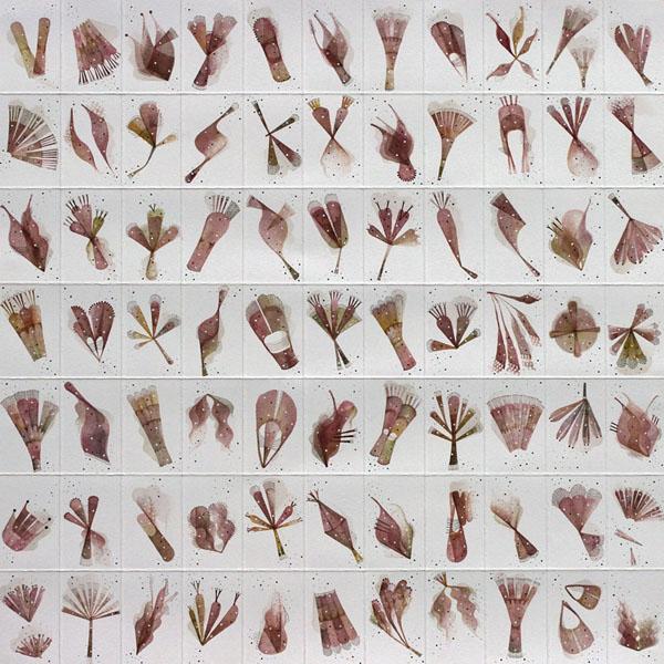 Florilegium no.8, ink on paper, 40 x 40 cm, 2019